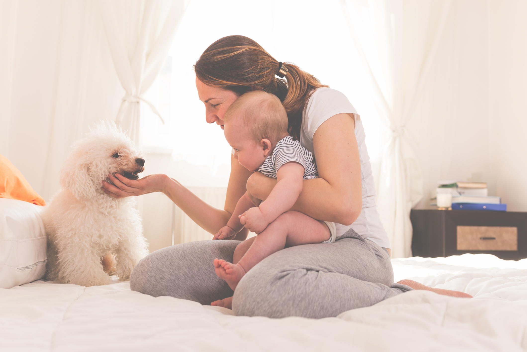 A new mom introduces her baby to the family dog on the bed