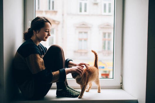 Young woman pets her orange tabby kitten on a large window sill overlooking the city