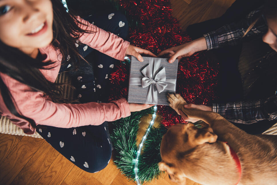 Kids open Christmas gifts with the family dog