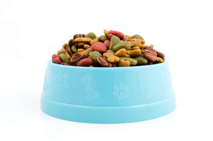 A pet food bowl full of multi colored kibble