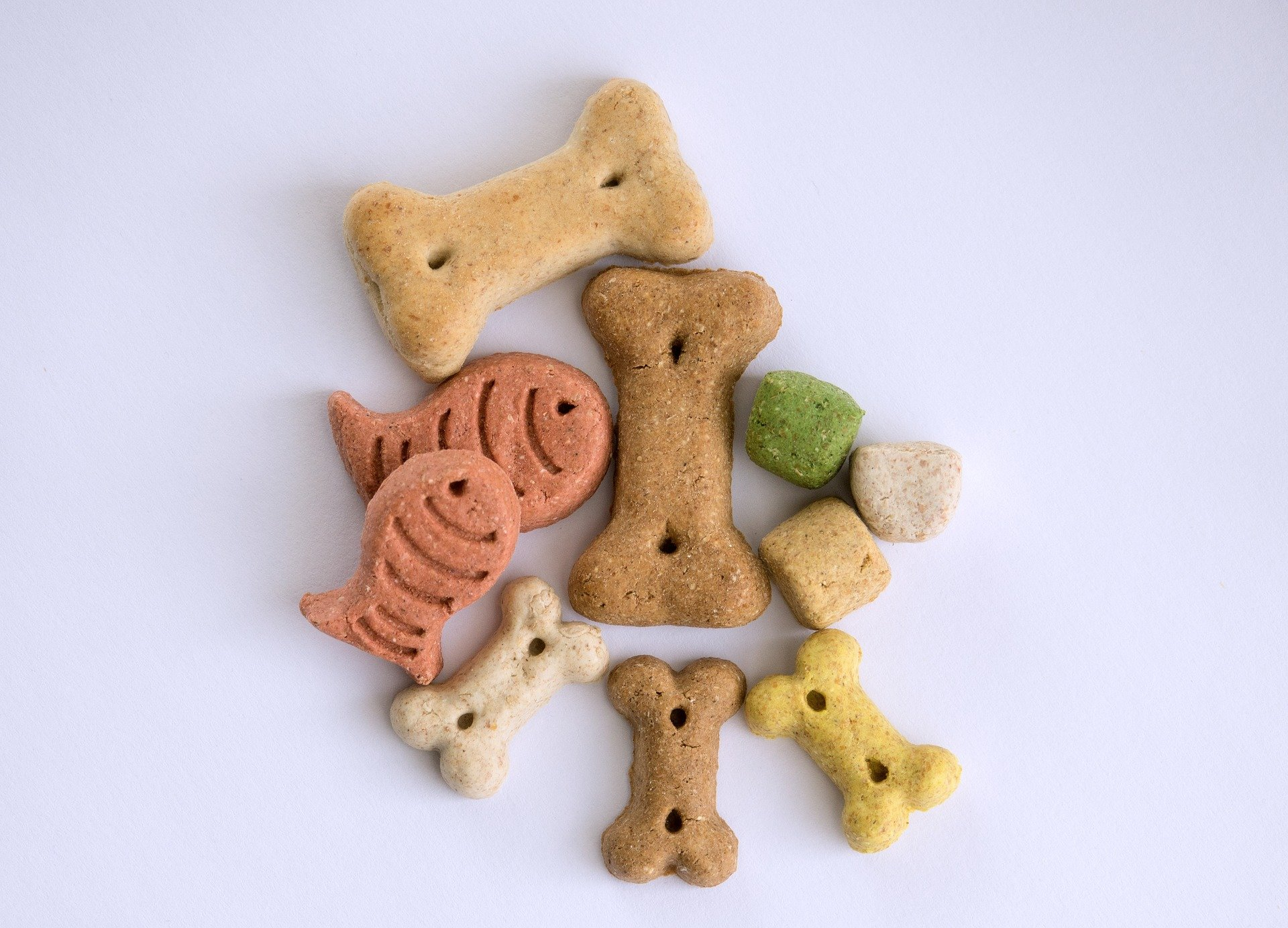An assortment of dog treats