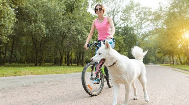 A woman in a pink shirt rides her bike in the park on a sunny day with her white dog